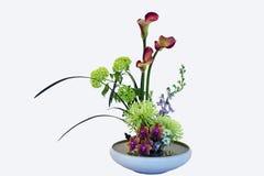 Ramalhete exótico da flor Fotografia de Stock