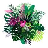 Ramalhete exótico de plantas tropicais, de folhas de palmeira e de flores em um fundo branco Ilustração botânica do vetor, projet Foto de Stock