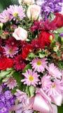 Ramalhete floral bonito, rosa & roxos fotografia de stock royalty free