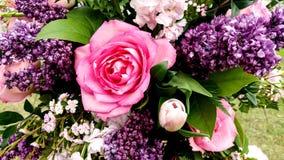 Ramalhete floral bonito, rosa & roxos fotografia de stock