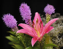Ramalhete floral com lírio Fotografia de Stock