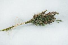 Ramalhete fresco das ervas no Livro Branco Foto de Stock Royalty Free
