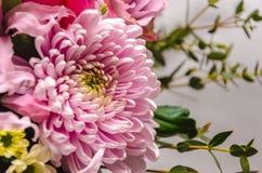 Ramalhete fresco delicado de flores frescas com um áster cor-de-rosa Fotos de Stock Royalty Free