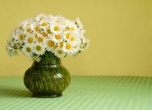 Ramalhete grande da margarida em um vaso Imagem de Stock Royalty Free