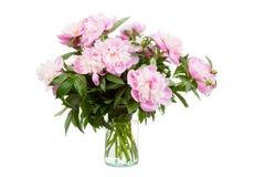 Ramalhete grande de peônias cor-de-rosa Fotografia de Stock Royalty Free