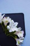 Ramalhete macio bonito do Alstroemeria no envelope em março cinzento Foto de Stock