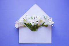 Ramalhete macio bonito do Alstroemeria no envelope no CCB azul Fotografia de Stock Royalty Free