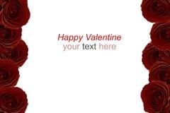 Ramalhete marrom das rosas vermelhas como o quadro no fundo branco Foto de Stock Royalty Free
