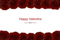 Ramalhete marrom das rosas vermelhas como o quadro no fundo branco Fotografia de Stock Royalty Free