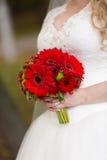 Ramalhete nupcial vermelho nas mãos de Fotos de Stock Royalty Free