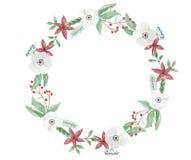 Ramalhete pintado Garland Festive Jolly Floral Hand dos feriados da grinalda da flor do Natal da aquarela ilustração royalty free