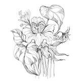 Ramalhete preto e branco Imagens de Stock Royalty Free