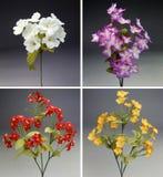 Ramalhete quatro colorido de flores da tela imagens de stock royalty free