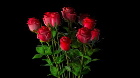 Ramalhete quebrado das rosas
