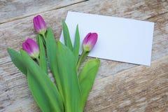 Ramalhete roxo da tulipa e cartão vazio Imagens de Stock Royalty Free