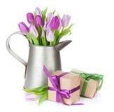 Ramalhete roxo da tulipa na lata molhando e nas caixas de presente Fotografia de Stock