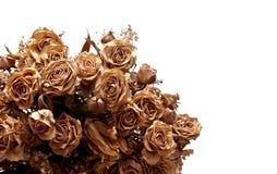 Ramalhete secado #1 Foto de Stock Royalty Free