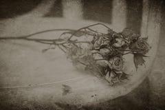 Ramalhete secado-acima abandonado fotos de stock