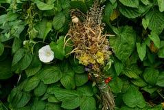 Ramalhete seco nos arvoredos do verde com uma flor branca Fotografia de Stock Royalty Free