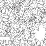 Ramalhete sem emenda da peônia Vetor Página do livro para colorir para adultos Arte finala tirada mão Casamento do conceito de Bo Fotografia de Stock