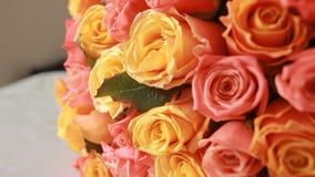Ramalhete suculento, colorido de rosas cor-de-rosa e alaranjadas, close-up video estoque