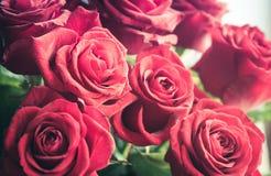 Ramalhete vermelho das rosas Fotos de Stock Royalty Free