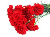 Ramalhete vermelho dos cravos Imagem de Stock Royalty Free
