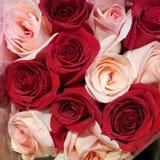 Ramalhete vermelho e cor-de-rosa das rosas imagem de stock royalty free