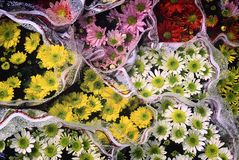 Ramalhetes da flor Fotos de Stock