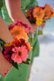 Ramalhetes das damas de honra Fotos de Stock Royalty Free