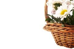 Ramalhetes das flores Apenas chovido sobre Fotos de Stock Royalty Free