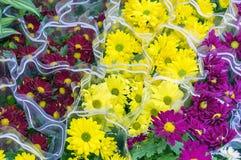 Ramalhetes de flores dos amarelos, dos vermelhos e dos roxos no contador de um florista imagem de stock