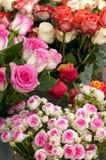 Ramalhetes de Rosa Foto de Stock