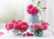 Ramalhetes de rosas cor-de-rosa em uns vasos diferentes imagens de stock