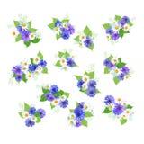 Ramalhetes dos Wildflowers ajustados Imagens de Stock