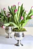 Ramalhetes enormes impressionantes de tulipas cor-de-rosa nos vasos antigos de prata Imagens de Stock