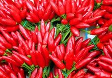 Ramalhetes pequenos de pimentões encarnados na venda no verdureiro Imagem de Stock