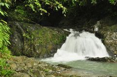 Raman Forest waterfall Royalty Free Stock Photos