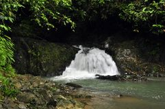 Raman Forest waterfall Royalty Free Stock Images