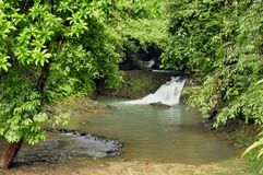 Raman Forest waterfall Royalty Free Stock Photo