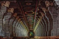 Ramanathaswamy寺庙,拉梅斯瓦拉姆走廊  免版税库存照片