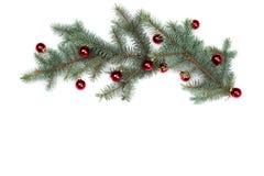 Ramas aisladas del abeto con las bolas del árbol de navidad Fotos de archivo libres de regalías