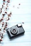Ramas con las flores Fotografía de archivo