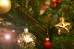 Ramas de árbol de Cristmas Foto de archivo