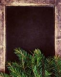 Ramas de árbol de navidad en marco de la pizarra de la Navidad del vintage. R Fotos de archivo libres de regalías