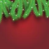 Ramas de árbol de navidad sobre tarjeta festiva moderna del fondo rojo Fotos de archivo