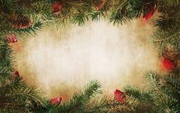Ramas de árbol de pino con las luces Foto de archivo libre de regalías