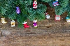Ramas de árbol imperecederas frescas de la Navidad Imagenes de archivo