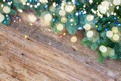 Ramas de árbol imperecederas frescas de la Navidad Imagen de archivo
