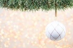 Ramas de árbol de navidad en un fondo brillante Imagenes de archivo